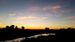 Golden River (michellemätzig) Tags: river nature landscape yellow orange blue cloud sun sunset sunrise spring black europe germany colour best beautiful wow favorite fantastic good gorgeous exciting awesome