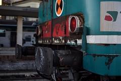 Micetta in 35 mm © (Foto di Camilla) Tags: trainlover trainspotting lens stazione monza micetta trenord nikon 35mm treno train 668 aln668 aln