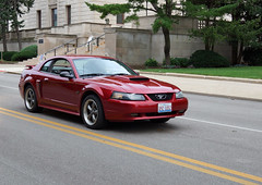 2003 Ford Mustang GT Coupe (myoldpostcards) Tags: auto 2003 cars ford car illinois classiccar vintagecar automobile antiquecar il churchill springfield autos grille mustang gt oldcar coupe owner ponycar frontend fomoco 2014 65th secretaryofstate motorvehicle fordmotorcompany 9614 collectiblecar vehicleshow myoldpostcards vonliski mikechurchill september62014 sherrychurchill