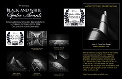 2014 Spider Awards Collage - Mabry Campbell (Mabry Campbell) Tags: longexposure white collage architecture buildings photography spider october image photos award competition images fav20 professional bland annual awards 9th fav30 competitions 2014 fav10 fav40 internationalaward blackandwhitespiderawards spiderawards mabrycampbell