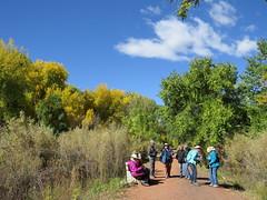 Along the River (Patricia Henschen) Tags: arkansasriver canoncitycolorado riverwalk usroute50