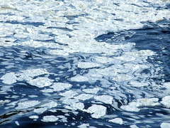 """Ice Lilypads • <a style=""""font-size:0.8em;"""" href=""""http://www.flickr.com/photos/34843984@N07/15238470737/"""" target=""""_blank"""">View on Flickr</a>"""