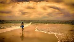 Australian Beach life Nex789 1080p Wallpaper - DSC04789  Nik-ven G-RL (cleansurf2) Tags: ocean life sunset sea wallpaper seascape color colour beach water girl clouds landscape kid surf sony australia run 169 nex 1080p 1920x1080