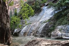 IMG_1958 (bluegrass0839) Tags: canyon national hoodoo bryce zion zionnationalpark brycecanyon nationalparks narrows hoodoos horsebackride parkthe