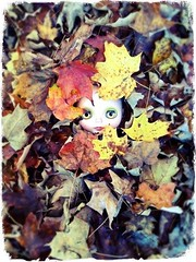 """Royce in a bed of leaves. [BaD 10/7/14] """"Autumn Leaves"""""""