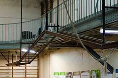La salle de l'Union de Paris (Bee.girl) Tags: paris france basketball sport basket ymca 2014 gustaveeiffel 75009 monumenthistorique luniondeparis