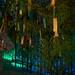 四天王寺の七夕 / Tanabata Festival at Shiten-no-ji