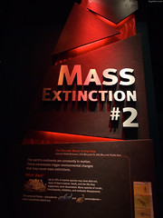 "Mass Extinction #2 • <a style=""font-size:0.8em;"" href=""http://www.flickr.com/photos/34843984@N07/15353429839/"" target=""_blank"">View on Flickr</a>"