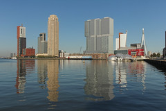 Rijnhaven - Rotterdam (Netherlands) (Meteorry) Tags: morning holland netherlands skyline architecture modern buildings reflections rotterdam europe skyscrapers neworleans nederland thenetherlands august montevideo kpn kopvanzuid paysbas erasmusbrug matin zuidholland waterreflections 2014 southholland meteorry derotterdam torenopzuid rijnhaven posthumalaan rflet hillelaan antoineplatekade tillemakade wilhemlinaplein wilhemlinatoren vandervormplein