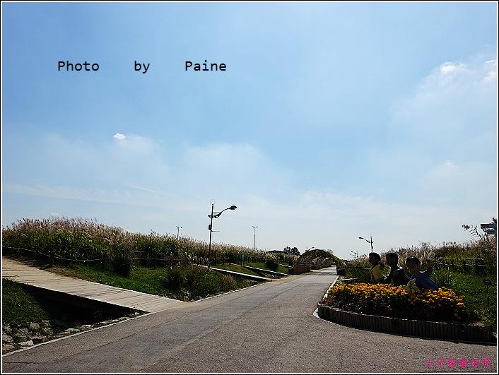 首爾 天空公園 (16).JPG