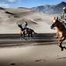 Sand Dunes Race