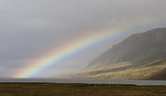 Rainbow in Álftafjörður (Brynja J.) Tags: sea mountain rainbow skógarströnd vanagram álftafjörðurlandscape