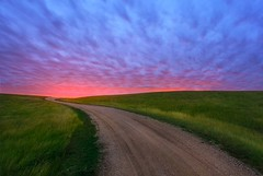 ANOTHER WAY TO HEAVEN (kadek susanto) Tags: road flowers blue sunset summer sky cloud sun white tree green nature beautiful field grass weather rural sunrise square landscape spring bright path horizon hill meadow dramatic sunny panoramic dirt land cloudscape nonurban