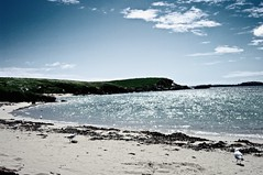 Beaching it (_wanderrlusst) Tags: ocean life sea summer sky sunlight seaweed bird beach nature glitter vintage landscape island photography seagull grunge hipster australia sparkle indie picmonkey:app=editor