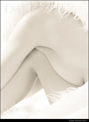 White On White - Abstract Nude (Max Johnson) Tags: woman white abstract lady female naked nude fur high model key breast skin leg pale topless creamy nudescape