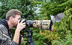 Doug and the Gray Jay (nickinthegarden) Tags: bc doug westvancouver grayjay cypressmountainpark