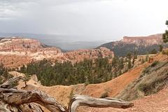 P9070163 (bluegrass0839) Tags: canyon national hoodoo bryce zion zionnationalpark brycecanyon nationalparks narrows hoodoos horsebackride parkthe