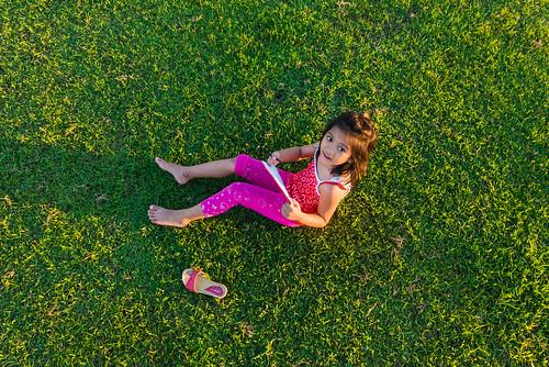 Pink on grass