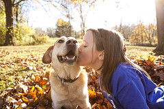 Mmmmwah! [week 5] (miss_n_arrow) Tags: autumn orange dog sun fall beagle colors beautiful sunshine weather yellow mix lab husky shine bright canine juneau huskador