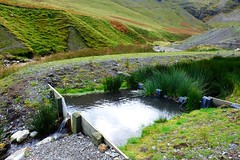 Force Crag Mine Water Treatment Scheme (Lee M Wyatt) Tags: england lake reed water metal landscape bed pond mine force beck district authority system mining cumbria novel coal scheme lead zinc treatment crag braithwaite coledale baryte