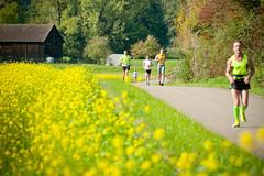DSC_7393 (steffen.grether) Tags: marathon veranstaltung gmnd schwbisch lauf waiblingen remstal waldhausen 27km
