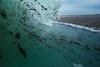 Seaweed mess (Lost Odyssey) Tags: ocean shells beach water sunrise rocks surf waves florida barrel paddle wave surfing atlantic surfboard tropical surfers reef skimboard