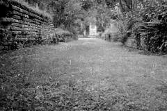 Abbey Mysteries (Spotmatix) Tags: camera film monochrome landscape effects countryside belgium places olympus xa3 villerslaville brabantwallon polypanf iso050 xafamily
