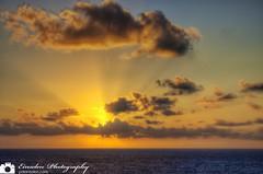 Cruise Sunrise