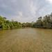 Brota de um rio raso e arenoso