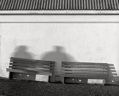 Benches, Heceta Head Lighthouse, Oregon (austin granger) Tags: lighthouse film lines oregon pattern shadows geometry benches slant largeformat hecetahead deardorff austingranger