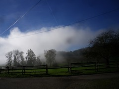 Morgen-Nebel Tettelham (bratispixl) Tags: germany oberbayern morgennebel waging chiemgau tettelham bratispixl