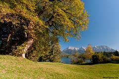 Herbststimmung am Barmsee (a.lippmann) Tags: bayern oberbayern alpen karwendel mittenwald barmsee alpenweltkarwendel