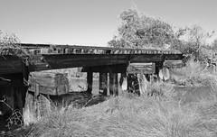 Missouri-Pacific Railway Trestle over Salt Bayou 1410251324bw (Patrick Feller) Tags: road county trestle bridge abandoned train way texas pacific timber salt rail railway right row bayou missouri mound stringer brazoria hoskins