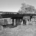 Missouri-Pacific Railway Trestle over Salt Bayou 1410251324bw