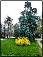 Milano parco Indro Montanelli 2017 . (alberto martucci) Tags: milanoitaliaitalymilanmailamd portavenezia indro montanelli centro svizzero piazza cavour leica digilux2