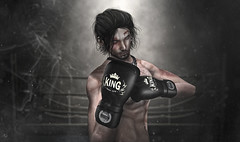 King of Boxing (_Adra_ * Be Back Soon *) Tags: boxer samurai nomatch gloves