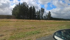 WP_20170225_16_10_44_Pro (David Denny2008) Tags: newzealand february 2017 sh8 sh1 canterbury