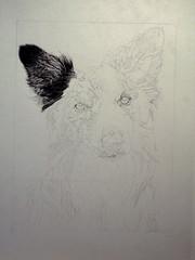 Work in Progress #6