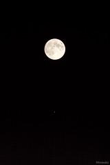 _MG_2369srgb (Morawatz) Tags: moon jupiter sky space satellite night planet darkness dark emptiness nothingness fullmoon pinkmoon canon zenit object minimal minimalism circle circles sphere dot morawatz texture
