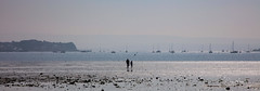 Heat Haze at Low Tide (clive_metcalfe) Tags: water poole harbour uk sparkle blue people yacht boats seaside haze