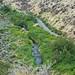 Cowiche Canyon Recreation Site