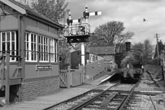 6412 GWR 0-6-0PT steam locomotive (Roger Wasley) Tags: 6412 gwr 060pt chinnor signal box mono monochrome blackandwhite steam trains railway
