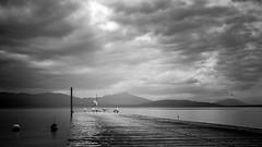 Attention j'arrive (Martial Blanchoud) Tags: lac eau léman bw noiretblanc noirblanc nuages ponton mouettes vaud paysage