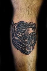 Bear tattoo (Thiago Padovani) Tags: beartattoo urso ursotatuagem bear tatuagem tattoo tatuaje tattoos thiagopadovani mementomoritattoostudio