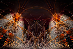 Carnivorous Plant (Luc H.) Tags: carnivorous plant abstract graphic graphism fractal digital