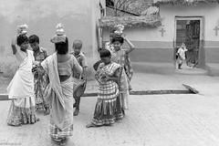 কচিকাঁচা (byabhi) Tags: santiniketan bolpur