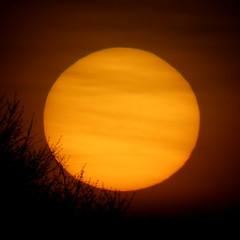 Sunset 12 Apr 2017 (mr_mctavish) Tags: sunset settingsun