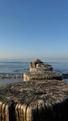 Meeressehnsucht (A.Dragonheart) Tags: buhne groin groyne wasser water baltic sea ostsee zingst strand beach meer wellen wave himmel sky blau blue holz wood