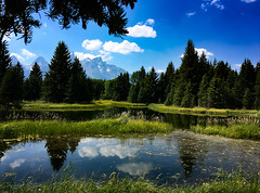 Tetons ~ summer day (Karen McQuilkin) Tags: tetons reflection i phone pond wyoming