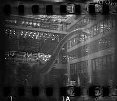 Sometimes I feel so outdated in these office buildings... (*altglas*) Tags: thesquaire office dino dinosaur dinosaurier analog bw monochrome kb ilfordpanf voigtländerprominent nokton expired surrealistic surreal expiredfilm